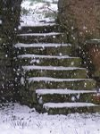escaliersouslaneige.jpg