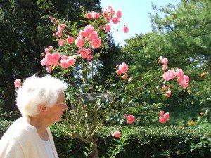 Maman et les roses