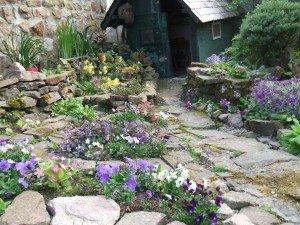 fleurs roc